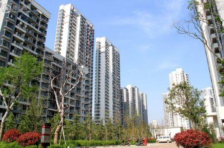 新加坡尚锦城