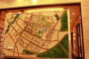 中央财津规划图