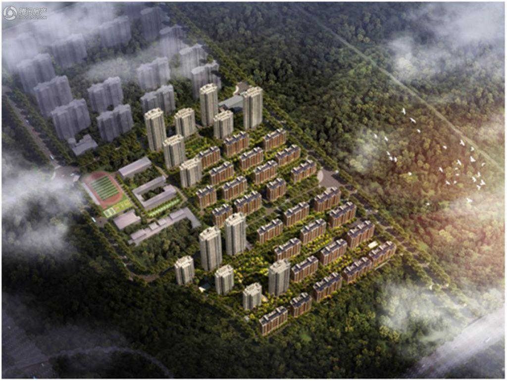 华地·森林语鸟瞰图