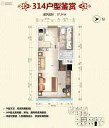 新城市学府1室1厅1卫37平方米户型图