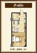 中汉财富湾1室1厅1卫55平方米户型图