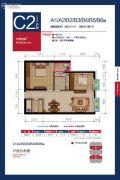 锦城2室2厅1卫83平方米户型图