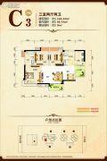康隆・财富旺角3室2厅2卫0平方米户型图