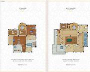 龙熙温泉庄园377平方米户型图