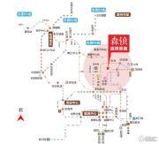 嘉辉豪庭・森镇交通图