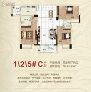 公园大地3室2厅2卫119平方米户型图