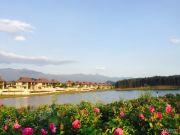 雅居乐原乡实景图