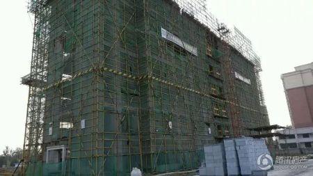 建业春天里