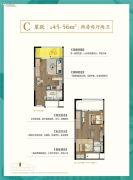 恒威海上花院跃公馆2室2厅2卫45--56平方米户型图
