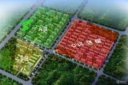 橄榄绿洲规划图