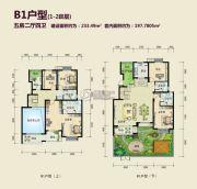 丽湖名居二期5室2厅4卫233平方米户型图