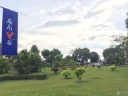 岭南V谷实景图