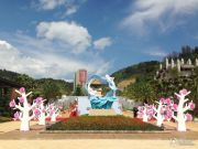 抚仙湖畔樱花谷外景图