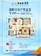 碧桂园映象3室2厅2卫101平方米户型图