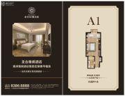 圣合玫瑰庄园・疗养酒店1室1厅1卫50平方米户型图