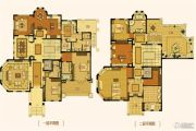 合生东郊别墅731平方米户型图