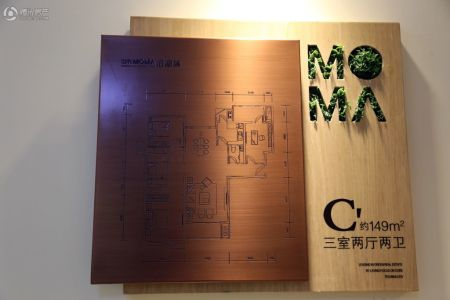 当代MOMA沿湖城