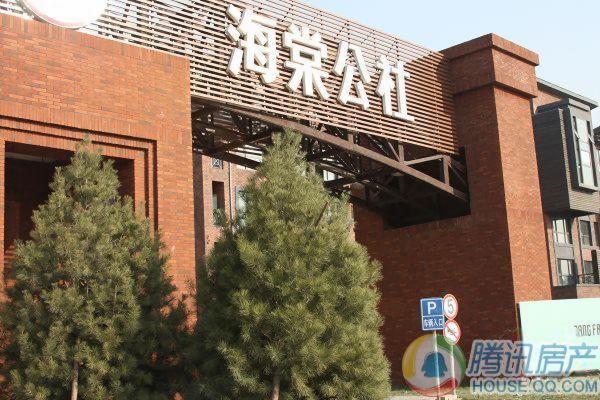 海棠公社实景09.11