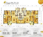 平远碧桂园6室2厅2卫245--262平方米户型图