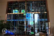 蓝鲸国际规划图
