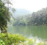 龙湖紫云台配套图