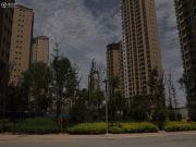 新元绿洲外景图