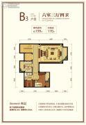 新城红郡0室0厅0卫199平方米户型图