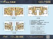 碧桂园・凤凰城【梧州】632平方米户型图