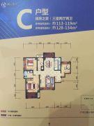 紫薇东进3室2厅2卫113--134平方米户型图