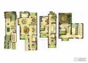 龙湖龙誉城5室3厅4卫338平方米户型图