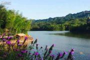 天岛湖实景图