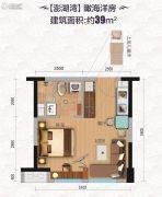 碧桂园・滨海城1室1厅1卫39平方米户型图