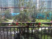 碧桂园世纪城实景图