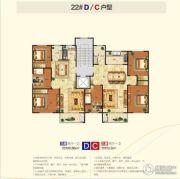 盛世新东城二期3室2厅1卫100--119平方米户型图