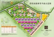 碧桂园森林里规划图
