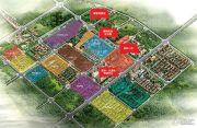 清华大溪地规划图