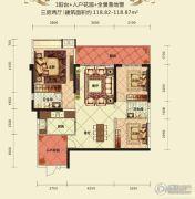 金岸华府3室2厅2卫118平方米户型图
