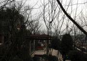 金鹏湖滨香山实景图