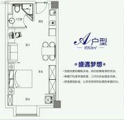 云开公馆1室1厅1卫53平方米户型图