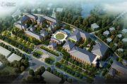中国青城国际颐养中心规划图