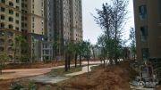 香榭里畔山兰溪实景图