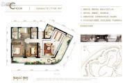 融创观澜湖公园壹号3室2厅2卫91--94平方米户型图