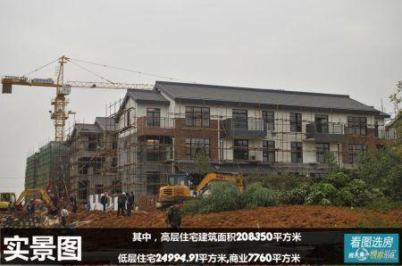 湘潭新房 岳塘区 > 宝安.江南城