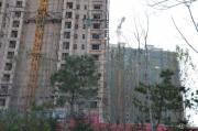 枫丹白露实景图