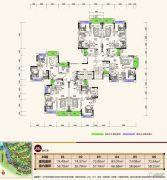 中恒海晖城72--83平方米户型图
