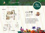 广安公园里3室2厅2卫116平方米户型图