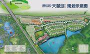 碧桂园・天麓湖规划图