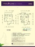 碧桂园山水桃园221平方米户型图