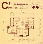 柳工・颐华城2室2厅1卫87平方米户型图