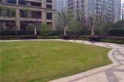 百合花园外景图